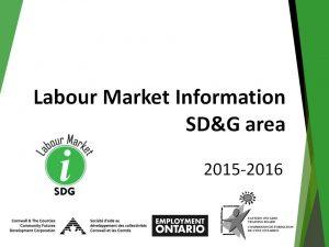 Labour Market Information SDG Presentation Image
